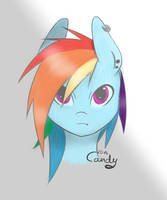 Dash by Candy-Muffin