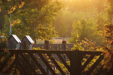 Fences by rosaarvensis