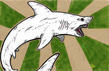 SHARKS by skmonteiro