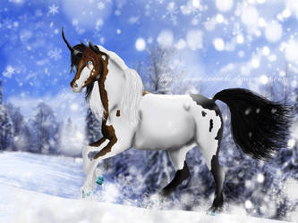 ESS - 2012 - Dashing through the Snow by Innochi