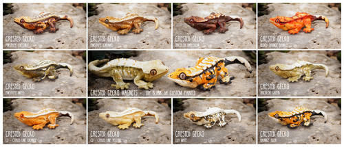 Crested Gecko Magnets by LimitlessEndeavours