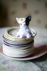 Miao-Tao cat by da-bu-di-bu-da