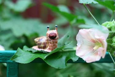 dog-snail by da-bu-di-bu-da