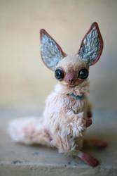 tiny siamese foxy by da-bu-di-bu-da