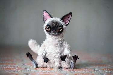 siamese kitty-fox by da-bu-di-bu-da