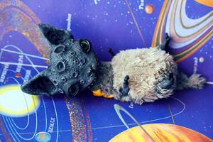 the mooncat by da-bu-di-bu-da