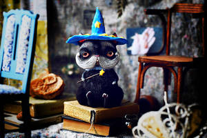 wizard cat by da-bu-di-bu-da
