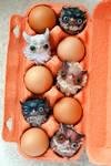 owls by da-bu-di-bu-da