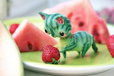 watermelon cat by da-bu-di-bu-da