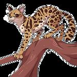 Margay Cat Commission by krokus00