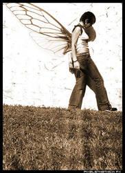 Butterfly... by xls