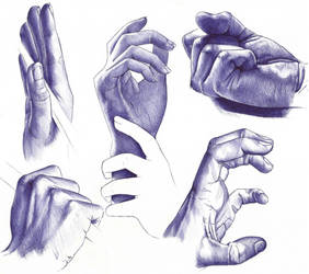 Hand Studies by OliveArtOlive