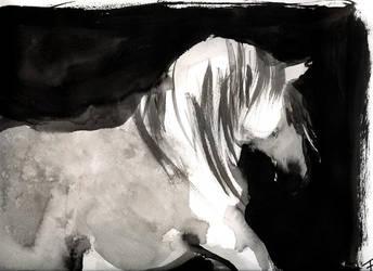 Horse in moonlight by OhAnneli