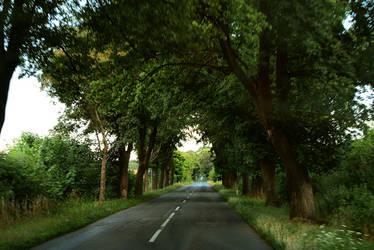 The Avenue by JasonRCFB