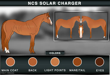 NCS Solar Charger by Volt-Draws