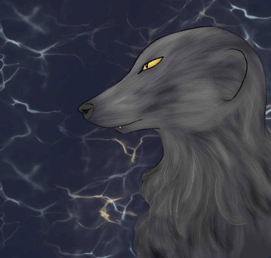 One Curly Boi by Aiko-Akita