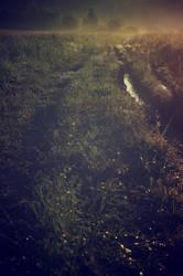 Sunrise railroad by StargazerLZ
