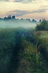 foggy morning by StargazerLZ