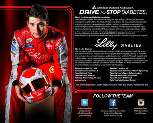 Lilly Hero Card Back by graphicwolf