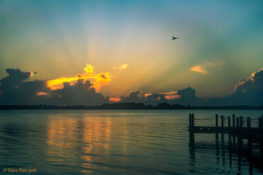 Indian River Sunrise by PeaTree-Creations