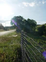 Shinny Fence by Anrev