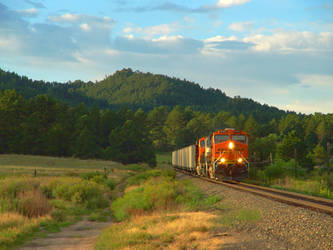Valley Train 01 HDR by Anrev