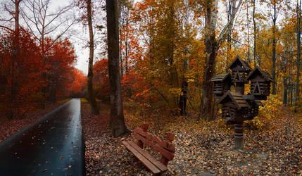 Fall by VitalySemenov