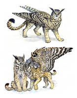 Owl-Griffins by Anisis