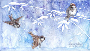 Winter Melody by Carcaneloce