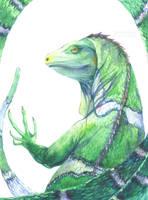 Fiji Crested Iguana by Carcaneloce
