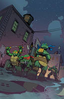 Turtles by Roboworks