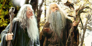 Gandalf and Radagast by The-Fellowship