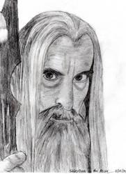 Saruman the White by The-Fellowship
