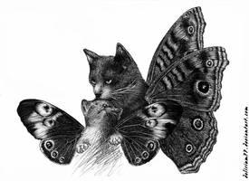 witche's cats by vasodelirium