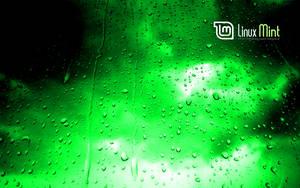 Mint in the green rain by malvescardoso
