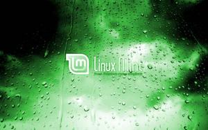 Mint in the green rain 4 by malvescardoso