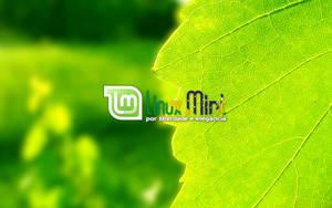To Linux Mint Brazil [a by malvescardoso