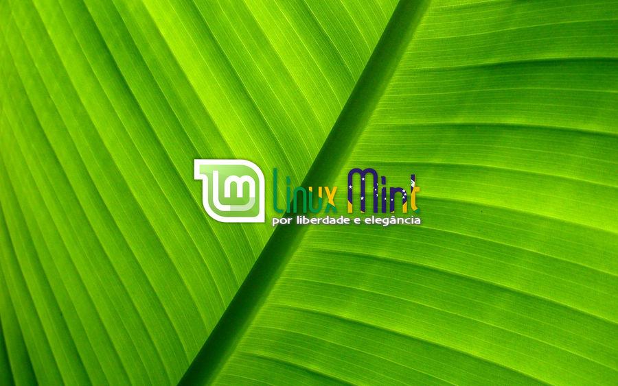 To Linux Mint Brazil [c by malvescardoso