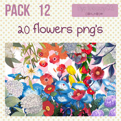 Pack 12 - 20 flowers png's by Keary23