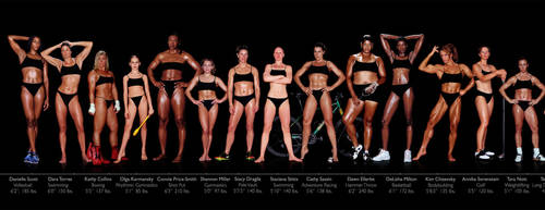 Various Female Physiques by fatehound45