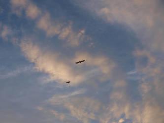 July 2012 Sky 30 by K1ku-Stock