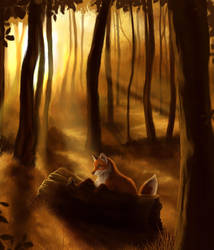 Fox by Kara-Kiwi