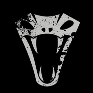TheFreemasonGamer's Profile Picture