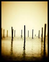 Days of Fog V by drakosha
