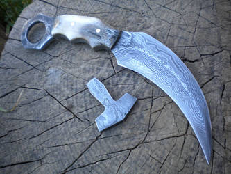 Karambit by hellize