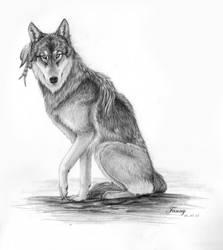 Wolf sketch by LarimarDragon