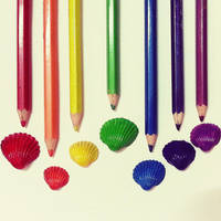 rainbow Seashell by demeters