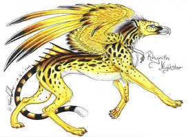 Rhynith Nightstar Gryphon by moonfeather