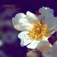 Jasminum by Anymouss