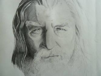 Gandalf the Grey by MissCarroll